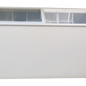 400 Liter Blue Star Glass Top Deep Freezer